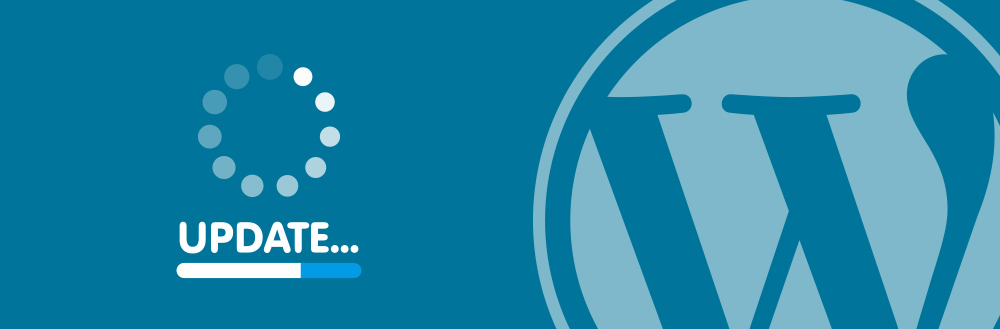 Keeping your wordpress website safe